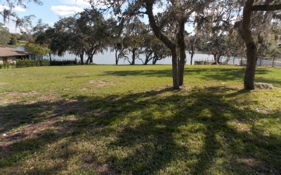 Lake Placid Residential Lots & Land For Sale: 737 Lake Blue Dr