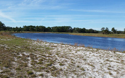 Residential Lots & Land For Sale: 1006 Nesting View Drive