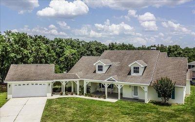 Avon Park, Lake Placid, Sebring Single Family Home For Sale: 385 Anderson St NE