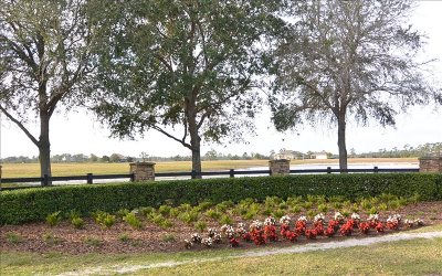 Residential Lots & Land For Sale: 1003 Nesting View Drive