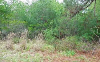 Residential Lots & Land For Sale: 2491 N Touchton