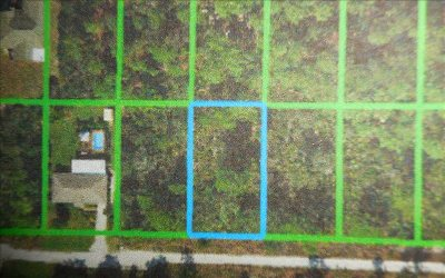 Residential Lots & Land For Sale: 247 Cardinal Ave