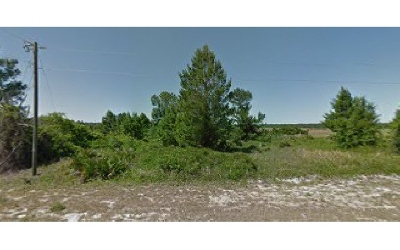Avon Park Residential Lots & Land For Sale: 2011 Hartman Rd