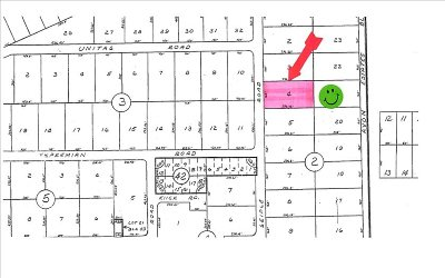 Avon Park Residential Lots & Land For Sale: 527 S Seiple Rd