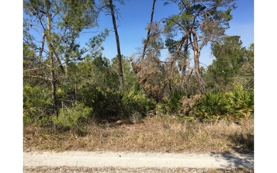 Residential Lots & Land For Sale: 2050 Andros St