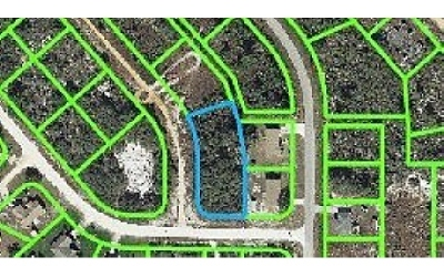 Avon Park Residential Lots & Land For Sale: 2910 W Gordon Rd