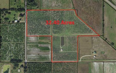 Residential Lots & Land For Sale: 4281 Mineral Branch