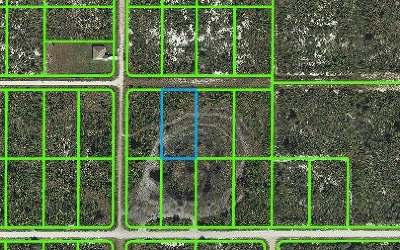 Avon Park Residential Lots & Land For Sale: 2351 W Reeves Road