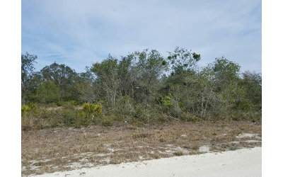 Residential Lots & Land For Sale: 2140 W Royalton Rd