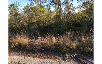 Residential Lots & Land For Sale: 2016 Andros St