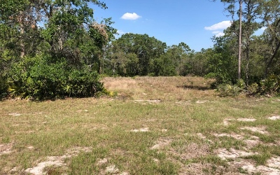 Residential Lots & Land For Sale: 3024 Woodland Creek Trl