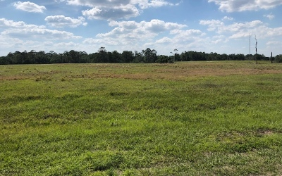 Residential Lots & Land For Sale: 1007 Nesting View Dr