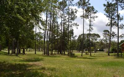 Sebring FL Residential Lots & Land For Sale: $44,000