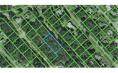 Avon Park Residential Lots & Land For Sale: 2317 N Barclay Rd