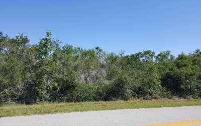 Avon Park Residential Lots & Land For Sale: 4641 E Avon Pines