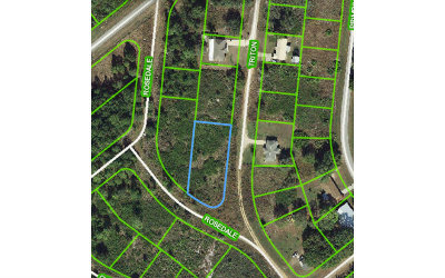 Avon Park Residential Lots & Land For Sale: 2401 N Triton Rd