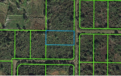 Avon Park Residential Lots & Land For Sale