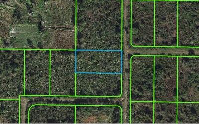 Avon Park Residential Lots & Land For Sale: 1176 S Gabriel Road