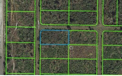 Avon Park Residential Lots & Land For Sale: 1325 S Jurgenson Rd