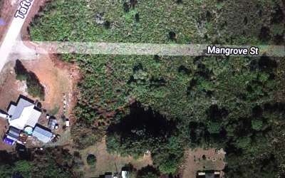 Lake Placid Residential Lots & Land For Sale: 1418 Mangrove St
