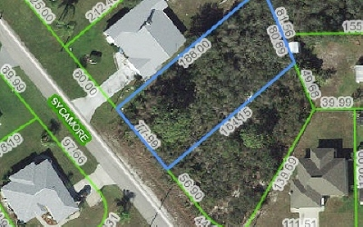 Lake Placid Residential Lots & Land For Sale: 1529 Mulberry Ave