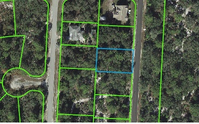 Lake Placid Residential Lots & Land For Sale: 821 Daffodil St