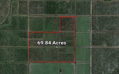 Hardee County FL Residential Lots & Land For Sale: $420,000