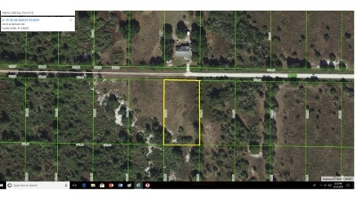 Avon Park Residential Lots & Land For Sale: 2923 W Reeves Rd