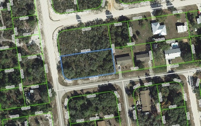 Avon Park Residential Lots & Land For Sale: 3360 W Lake Chilton Dr