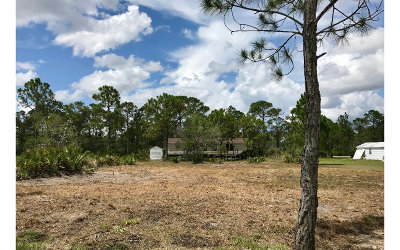 Sebring Residential Lots & Land For Sale: 590 Max Ave