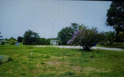 Sebring Residential Lots & Land For Sale: 401 Blossom Dr