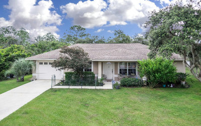 Avon Park, Lorida, Lake Placid, Sebring Single Family Home For Sale: 2111 Lake Josephine Dr