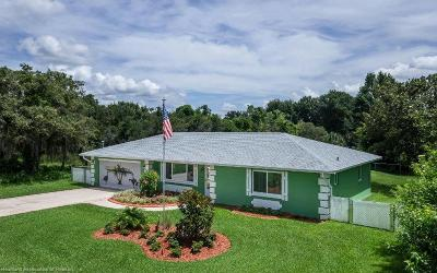 Avon Park, Lorida, Lake Placid, Sebring Single Family Home For Sale: 255 Tangerine Rd