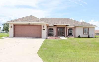 Sebring Single Family Home For Sale: 424 Glen Mar Cir