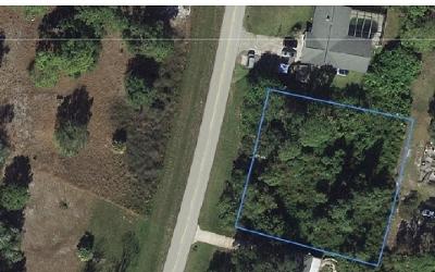Lake Placid Residential Lots & Land For Sale: 349 Washington