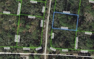 Lake Placid Residential Lots & Land For Sale: 305 Imagination Dr