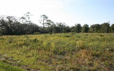 Sebring Commercial Lots & Land For Sale: 5765 Us 98