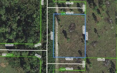 Avon Park Residential Lots & Land For Sale: 400 Ballard Rd