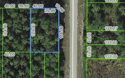 Sebring Residential Lots & Land For Sale: 501 Magnolia St