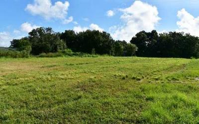 Sebring Residential Lots & Land For Sale: 1840 Schlosser Rd