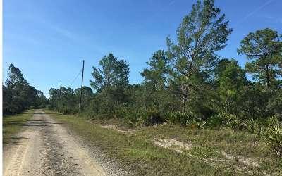 Lake Placid Residential Lots & Land For Sale: 1236 Persimmon St