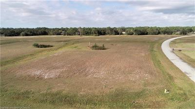 Residential Lots & Land For Sale: 1005 Nesting View Dr