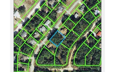 Avon Park Residential Lots & Land For Sale: 1914 N Zenith Road