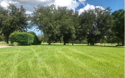 Residential Lots & Land For Sale: 2408 Lost Ball Dr