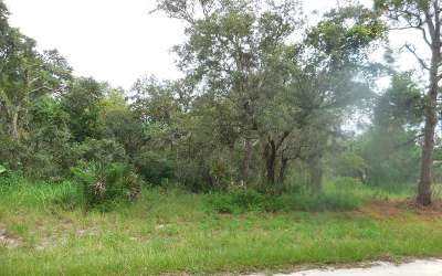 Residential Lots & Land For Sale: 2500 N Todd Road
