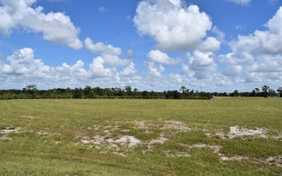 Residential Lots & Land For Sale: 3002 Osprey Point Circle