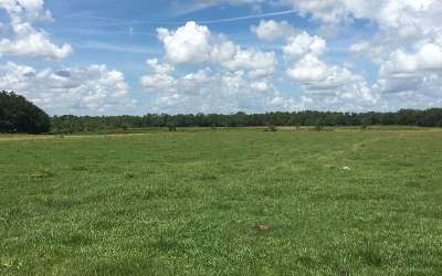 Highlands County Residential Lots & Land For Sale: 3105 N Sedgewick Road