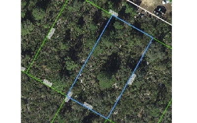 Lake Placid Residential Lots & Land For Sale: 1027 Freehill Avenue