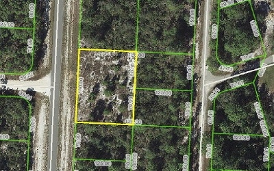 Lake Placid Residential Lots & Land For Sale: 819 Wildflower St