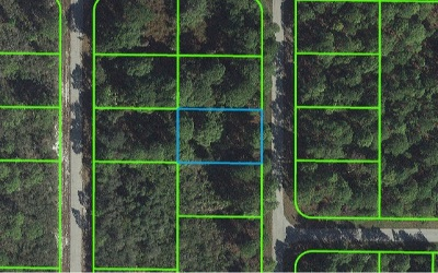 Lake Placid Residential Lots & Land For Sale: 437 NW Aerostar Ave.